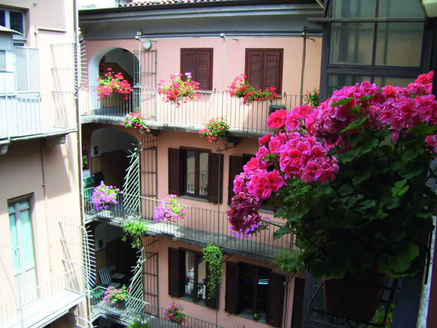 Madian Orizzonti - Torino